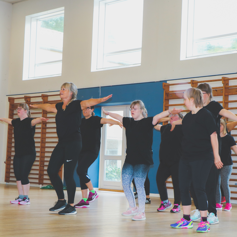 Danseopvisning